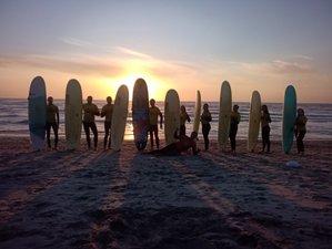 8 Day All Levels Nature Surf Camp near Porto, Aveiro