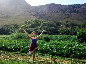 7-Daagse Detox en Yoga Retraite in Costa Rica