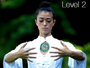 Self-Paced 8 Trigram Qigong Online Master Course Level 1 and 2
