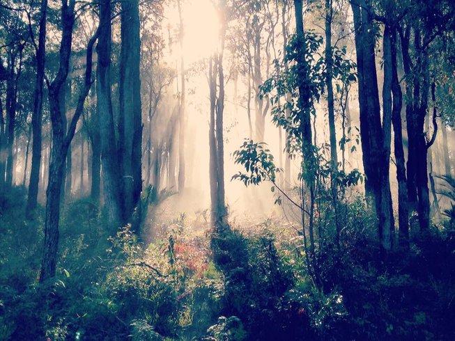 3 Days Detox and Yoga Retreat in Perth, Australia