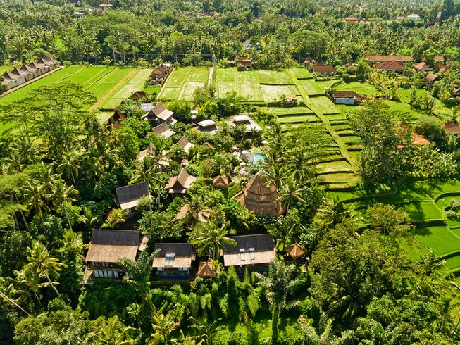 4 Days Wellness Meditation Retreat in Ubud, Indonesia
