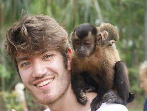4 Day Amazon Wildlife Tour in Iquitos, Loreto