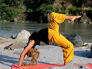 27 Day 200hr Hatha Yoga Teacher Training with Body and Emotional Detoxification in Rishikesh