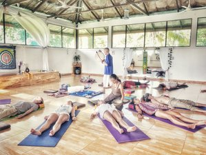 8 Day Self-Healing, Yoga and Meditation in Koh Phangan, Thailand