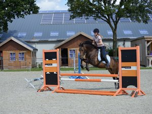 14 Day ESI Youth Riders Camp in Flevoland