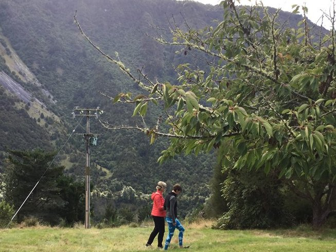 7 Tage Alexander Technik und Yoga Urlaub auf der Südinsel, Neuseeland