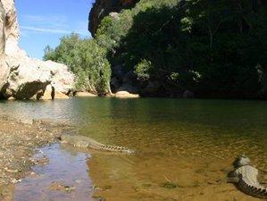 9 días de tour de vida salvaje con acampada en el camino de Broome a Darwin, Australia