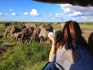 16 Days Capture the Iconic Images of Africa Photography Safari in Kenya and Tanzania