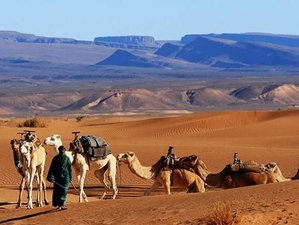 2 Days Zagora Desert Safari in Morocco