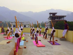 28 Day 200-Hour Hatha and Vinyasa Flow Yoga Teacher Training Course in Rishikesh
