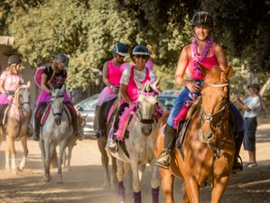 6 Days of Horse Trekking, Jumping, and Dressage in the Albufeira Countryside, Portugal