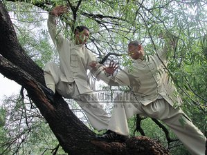2 Week Kung Fu Training in Qufu, Shandong
