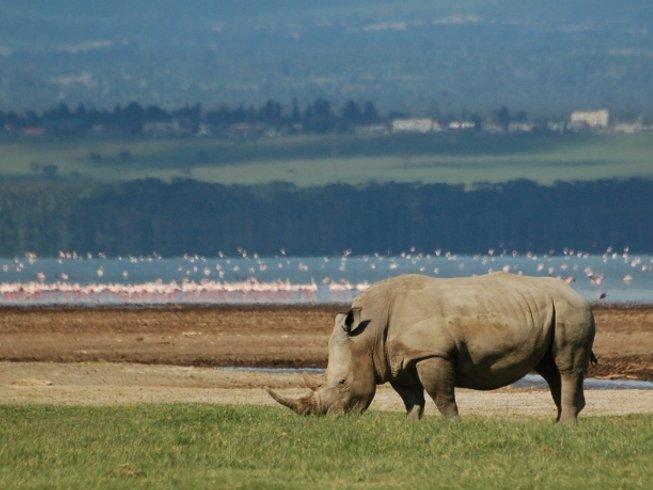 7 Days Savannah Safari in Kenya