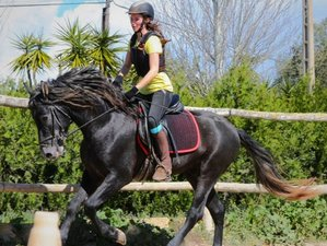 3 Day Horse Riding Holiday in Mallorca, Balearic Islands