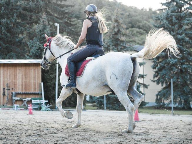 Level: Intermediate Riding