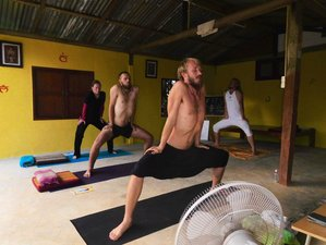 7 Days Zen and Hatha Yoga Retreat in Thailand