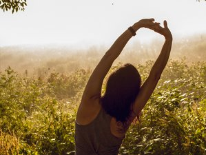 4 Days Weekend Lazy Wellness Goals and Intention Setting Yoga Retreat in Millbrook, New York, USA