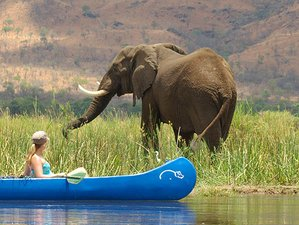 4 Days Canoeing Safari in Zambia
