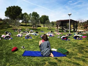 6 Day Detox Retreat with Yoga, Meditation, and Sungazing in Campillo de Ranas, Guadalajara Province