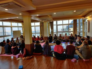 29 Day 200-Hour Online Yoga Teacher Training Course From Himalayan Yogis of Nepal