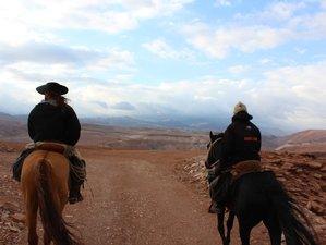 9 Day Wild Atacama Horseback Riding Holiday in Calama, Antofagasta