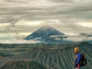 4 Day Bromo, Ijen, and Sukamade Wildlife Tour in Indonesia
