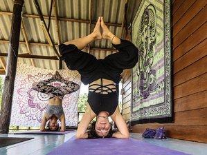 18 días profesorado de yoga certificado de 200 horas en Ko Phangan, Tailandia