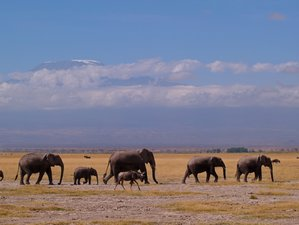 10 Days African Culture and Wildlife Safari in Kenya and Tanzania