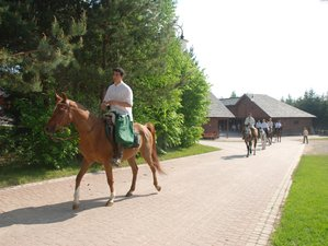 5 Days Horse Riding Holiday for Intermediate Riders on the Outskirts of Knyszyńska Forest in Poland