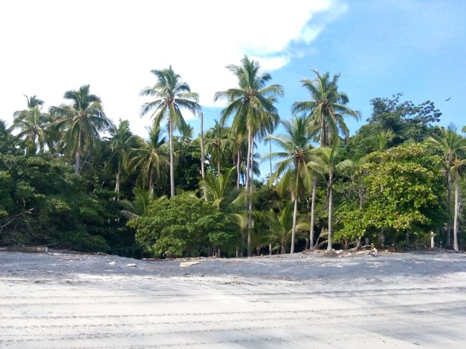 7 Days Tropical Adventure SUP and Yoga Retreat in San Carlos, Panama