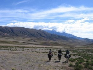 9 Day From Lerma to Calchaqui Valley Horse Riding Holiday in Salta