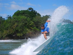 8 Days All-Level Surf Camp Tamarindo, Guanacaste Province, Costa Rica
