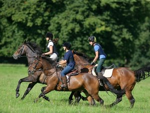 3 Days Weekend Cross Country Horse Riding Holiday in Tipperary, Ireland