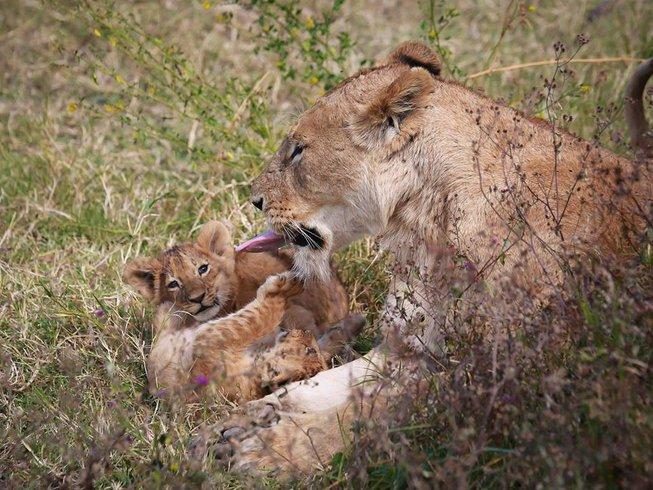 12 Days Beach Holiday and Safari in Tanzania