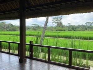 2 Day Online Spiritual Mentoring Retreat with Yoga & Meditation from Ubud, Bali
