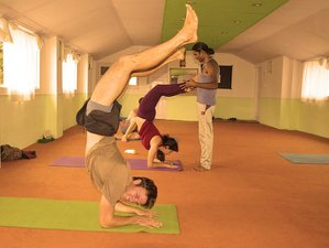 41 Days 300-Hour Yoga Teacher Training in Dharamsala