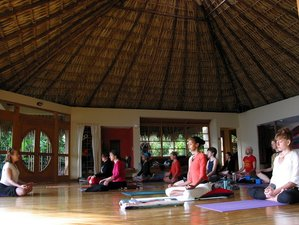 8 Day Yoga and Mayan Culture Retreat in Lake Atitlan