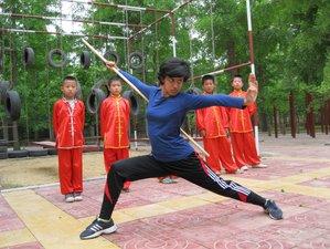 1 Year Kung Fu Training in Shandong, China