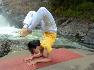 29 Day Online 200-Hour Sivananda Yoga Teacher Training