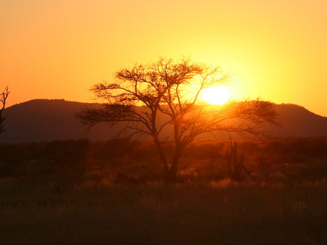 10 Days Wildlife Safari in Africa