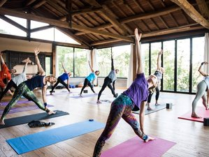 3 días retiro de yoga en Redwood, California, EUA