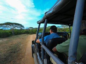 3 Days Exclusive Tented Safaris in Yala National Park, Sri Lanka with Kulu Safaris