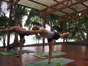 6 Days Blissed Yoga Retreat in Osa Peninsula, Costa Rica
