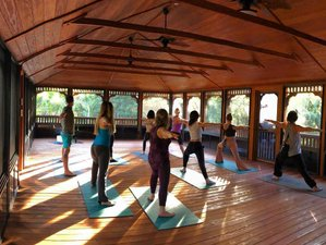 3 Days Woman Unwinding: A Yoga Retreat for Women Who Do Too Much in Florida, USA