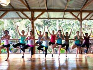 8 Tage Reiki und Yoga Retreat in Panama