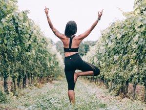 7 Days Yoga, Hiking, and Biking Retreat in Tuscany, Italy