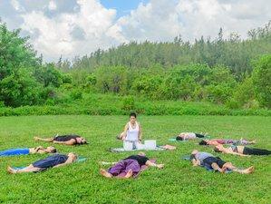 3 días de playa, meditación y retiro de yoga en Florida, EUA