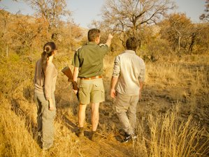 3 Days Morokolo Lodge Professionally Guided Safari in South Africa