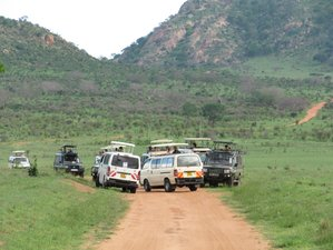 5 Days Big Five Safari in Tsavo East and West, Amboseli, and Taita Hills, Kenya