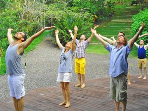 8 Days Ayahuasca, Meditation and Yoga Retreat in Brazil